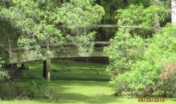 Secret Spot Outer Banks Kayak Tours