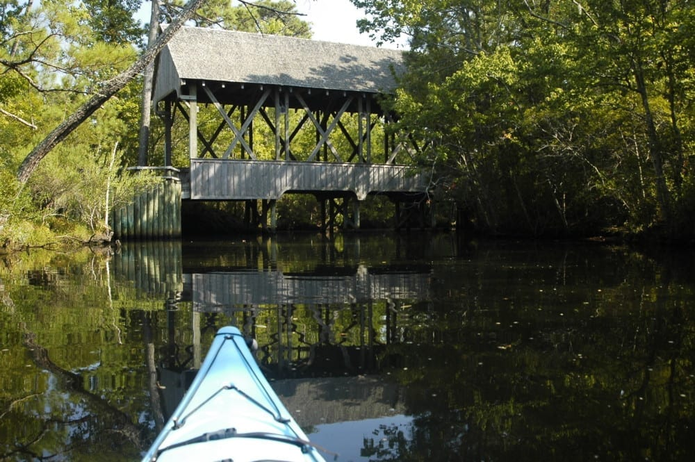 Kitty Hawk Woods Maritime Forest Kayak Tour