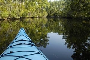 Outer Banks Kayak Eco Tours