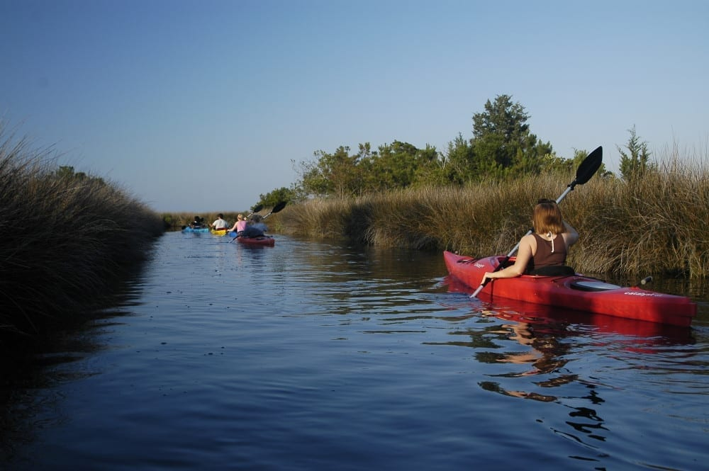 Roanoke Island Kayak Tour