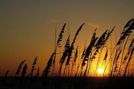 Pea Island Sunset