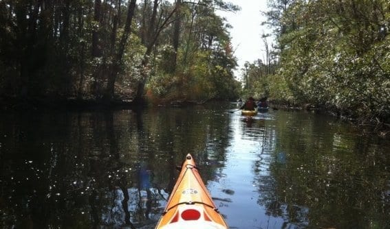 Outer Banks Kayak Eco-Tours